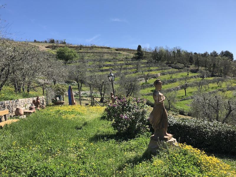 Monteraponi Garden