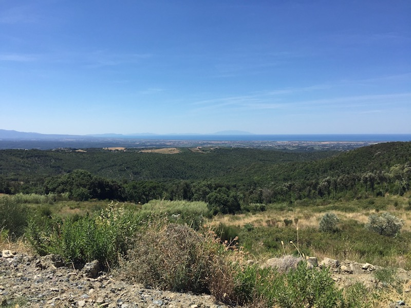 costa landscape