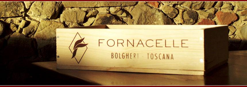 Fornacelle, Bolgheri